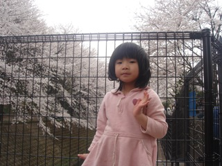 桜とひかりさん
